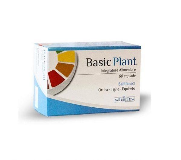 basic plant