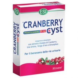 cranberry cyst ovalette