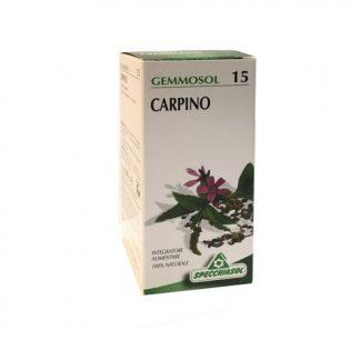 gemmosol 15 carpino