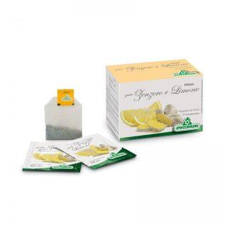 infuso zenzero e limone filtri