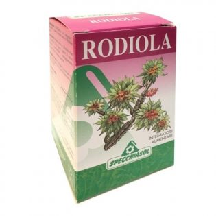 rodiola compresse