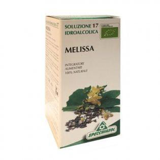 soluzione idroalcolica 17 melissa