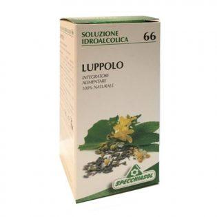 soluzione idroalcolica 66 luppolo
