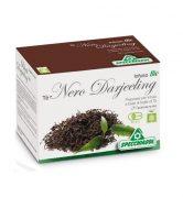 tè nero darjeeling bio filtri